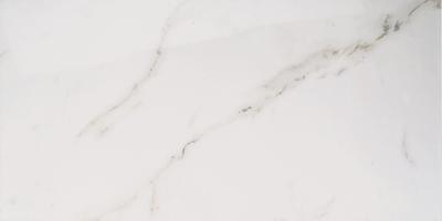 Carrara Polished 12x24 265833
